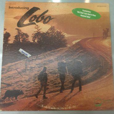 Lobo – Introducing Lobo, Vinyl LP, Big Tree Records – BTS 2003, 1971, USA